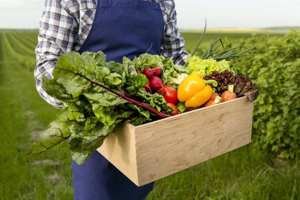 post warzywno-owocowy  skrzynka z warzywami